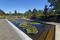 In the VanDusen Gardens, July 2010 1