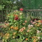 """Green Flower Garden"" by RayPayette"