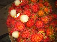 Tropical Fruit
