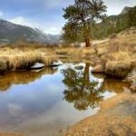 """Springtime Reflection"" by gwigler"