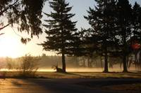 Morning on the course