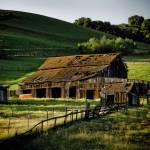"""My Barn"" by sabinedukes"