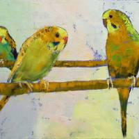 """Three Parakeets"" by creese"