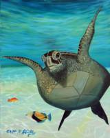 Happy Hono Green Sea Turtle