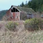 """Fidalgo Barn"" by gritchhart"