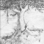 """Tree Sketch"" by pgs"
