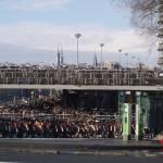 """Amsterdam Bikes"" by CMwanek"