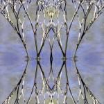 """""""Ocean Forest"""" by Avianatic"""