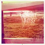 """Imagekind"" by lovecreativesoul"