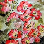"""Pink Roses Botanical Watercolor"" by GinetteCallaway"