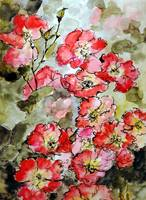Floribunda Roses Watercolor & Ink by Ginette