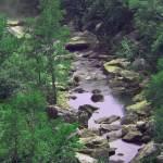 """Little River, AL"" by eblovell"