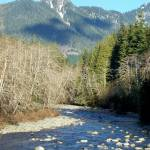 """Pilchuck River"" by gritchhart"