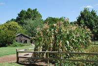 Prarie Home and Corn Garden