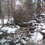 """creek in colorado"" by misckate"