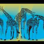 """LA Zoo Giraffes"" by magicalview"
