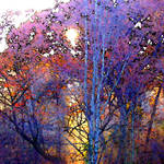 """autumn leaves"" by pietrastone"