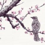"""plum_blossom_n_bird_1"" by gbensonart"