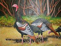 Turkeys in Autumn