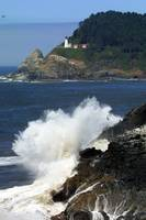 Heceta Head Wave
