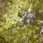 """""""Rippling Reflections"""" by stilljustabill"""