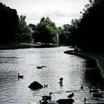 """Verulamium park in St. Albans"" by Jacobanchini"
