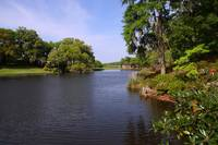 Middleton Place Gardens
