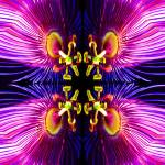 """Alien Passionflower"" by davidfosterlay"