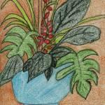 """Potted Plant"" by jmeraz"