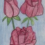 """""""Three Roses"""" by jmeraz"""