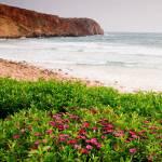 """""""life at the sea shore"""" by jcroldan"""