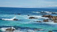 17 mile drive, california