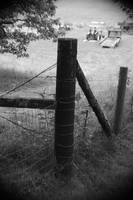 Country Fence Post