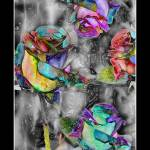 """Sunlit Roses"" by artforcancer"