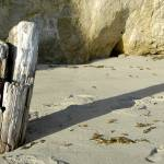 """""""Driftwood Pilings"""" by KatRosePhotography"""