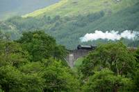 Steam Engine at Glenfinnan Viaduct