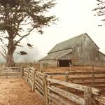 """""""222 Old Barn"""" by willphoto"""