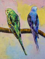 Green and Violet Budgies