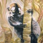 """Lemur/cricket st thomas wildlife park"" by furballs"