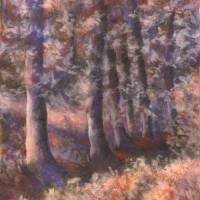 Forest 2 Art Prints & Posters by Jo Bradney