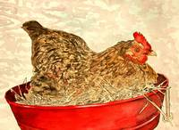 hen chicken painting