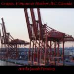 """""""Cranes, Vancouver Harbor, B.C. Canada"""" by Attila_Photos"""