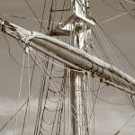 """The Mast"" by gibbons"