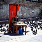 """""""Pigeon lady in Istanbul"""" by moravec"""