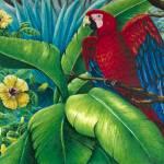 """""""Scarlet Macaw"""