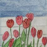 """""""Tulips Against the Fence"""" by jmeraz"""