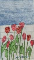 Tulips Against the Fence