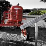 """Wine Country Tractor"" by SBCountyImages"