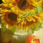 """""""Sunflowers"""" by jackimroczkowski"""