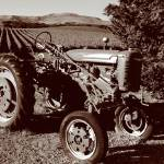 """Wine Country Tractor 02_Sepia"" by SBCountyImages"
